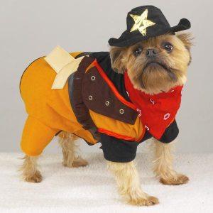 Happy Tails Cowboy Pet Costume