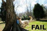 best_of_fail_01